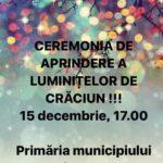 Inaugurarea festivă a Pomului de Crăciun la Hîncești !
