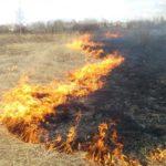 Video! Arde iarba uscată din Parcul Municipal Hîncești