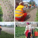Lucrătorii de la Regia ARA din Hâncești  au majorări de 40%  la salariu