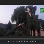 Video! Copaci doborâți.Străzi inundate și deconectări de energie electrică la Hâncești
