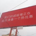 Un baner neobișnuit a apărut în Hîncești ! vezi ce înseamnă acest mesaj