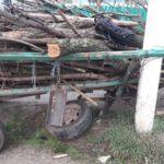 O căruță s-a tamponat într-un pilon electric la Logănești