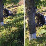 Video! Un tânăr de 18 ani a decedat pe loc în urma unui accident